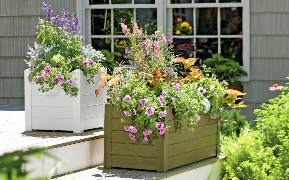 клумба перед домом и в саду оригинальные способы оформления