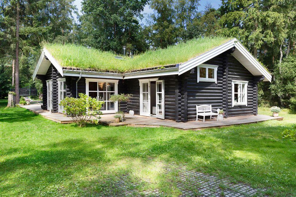Зеленая кровля или сад на крыше
